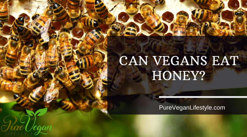 can vegans take honey